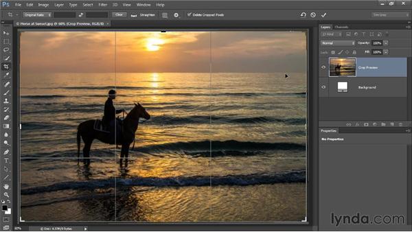 Cropping the image: Photoshop CC Image Optimization