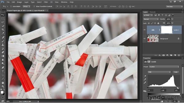 Refining tonality with Levels: Photoshop CC Image Optimization