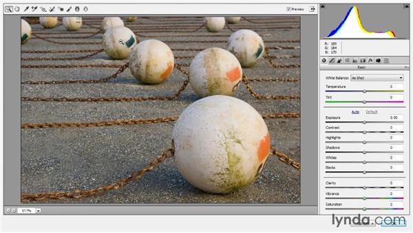 Incorporating Camera Raw: Photoshop CC Image Optimization
