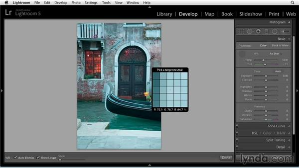 Setting white balance: Up and Running with Lightroom 5