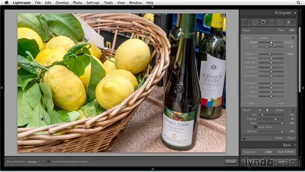 Targeting edits with the Adjustment Brush: Up and Running with Lightroom 5