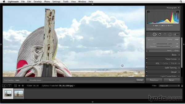 Removing dust spots with Spot Removal circles: Up and Running with Lightroom 5