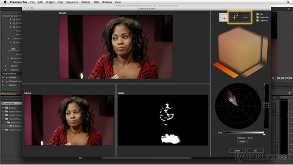 Observing the sfumato technique to smooth skin: The Art of Color Correction: Artistic Color Grading on the Timeline
