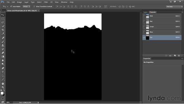Selections, alpha channels, and layer masks, oh my!: Photoshop CC Selections and Layer Masking Workshop