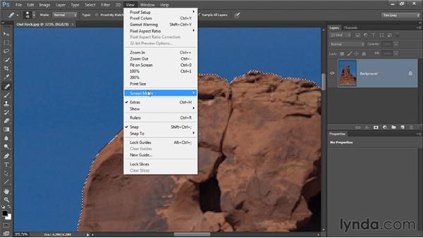 Temporarily hiding a selection: Photoshop CC Selections and Layer Masking Workshop