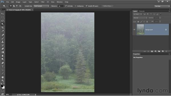 Using the cursor for selections: Photoshop CC Selections and Layer Masking Workshop