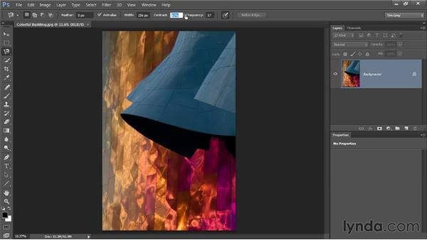 The Magnetic Lasso tool: Photoshop CC Selections and Layer Masking Workshop
