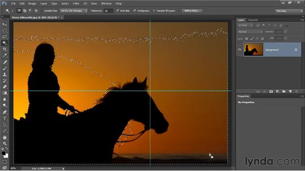 The Magic Wand tool: Photoshop CC Selections and Layer Masking Workshop