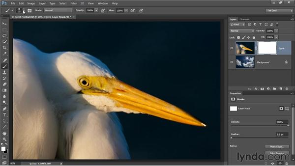 Painting to hide and reveal: Photoshop CC Selections and Layer Masking Workshop
