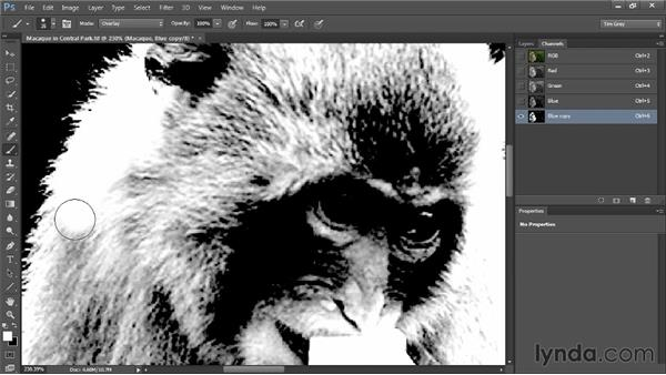 Advanced mask cleanup: Photoshop CC Selections and Layer Masking Workshop