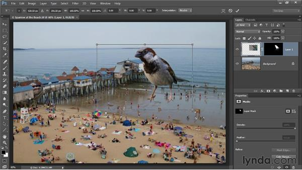 Transforming a masked object: Photoshop CC Selections and Layer Masking Workshop