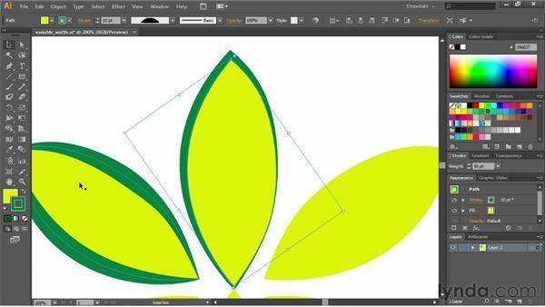 Using width profiles: Illustrator CC Essential Training (2013)