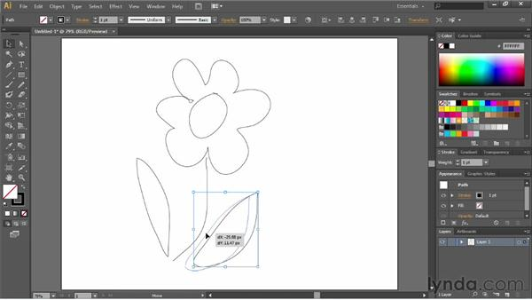 Smoothing and erasing paths: Illustrator CC Essential Training (2013)