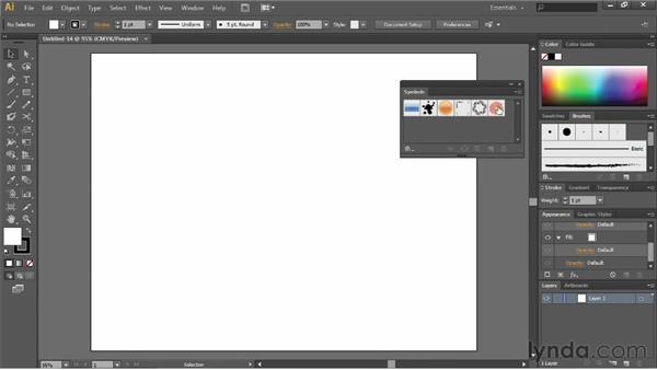What are symbols?: Illustrator CC Essential Training (2013)