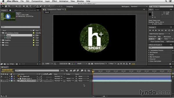: After Effects CC Essential Training