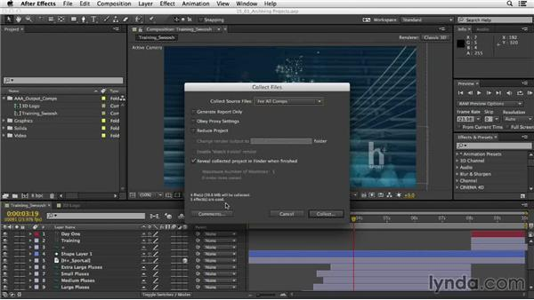 Archiving your projects: After Effects CC Essential Training