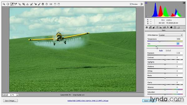 Basic color for raw: Up and Running with Color Correction in Photoshop CC