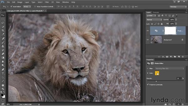 Correcting with a hint of tint: Up and Running with Color Correction in Photoshop CC