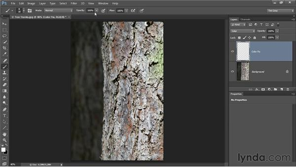 Painting a color fix: Up and Running with Color Correction in Photoshop CC