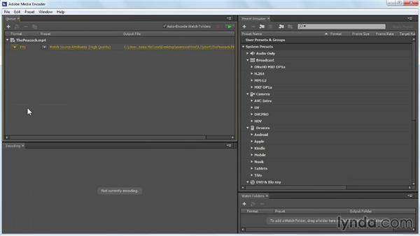 Converting video with Adobe Media Encoder: Up and Running with Flash Professional CC