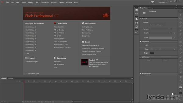 Understanding Adobe AIR: Up and Running with Flash Professional CC