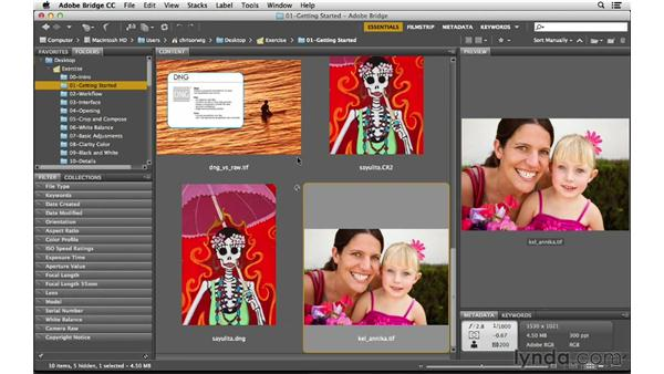 Bridge overview and preferences: Photoshop CC for Photographers: Camera Raw 8 Fundamentals