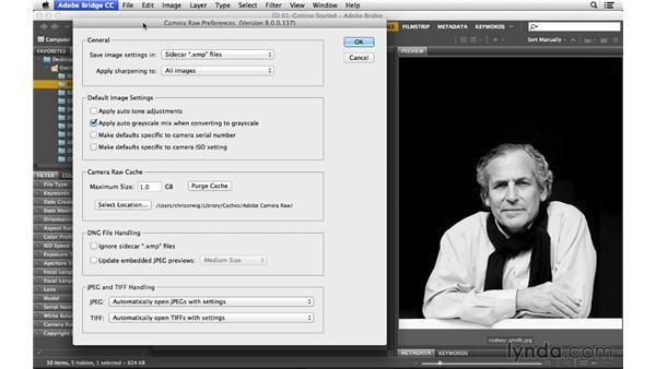 Optimizing the performance of Bridge and Camera Raw: Photoshop CC for Photographers: Camera Raw 8 Fundamentals