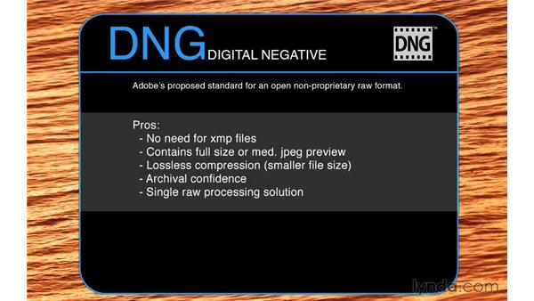 The advantages of using DNG: Photoshop CC for Photographers: Camera Raw 8 Fundamentals