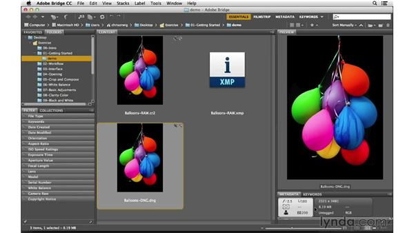 Comparing RAW and DNG: Photoshop CC for Photographers: Camera Raw 8 Fundamentals