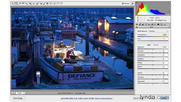 Advanced panel navigation: Photoshop CC for Photographers: Camera Raw 8 Fundamentals