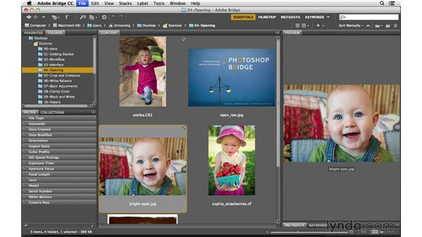 Opening JPEGs and TIFFs in Bridge: Photoshop CC for Photographers: Camera Raw 8 Fundamentals