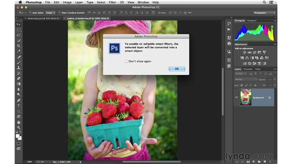 Using Camera Raw as a filter in Photoshop: Photoshop CC for Photographers: Camera Raw 8 Fundamentals