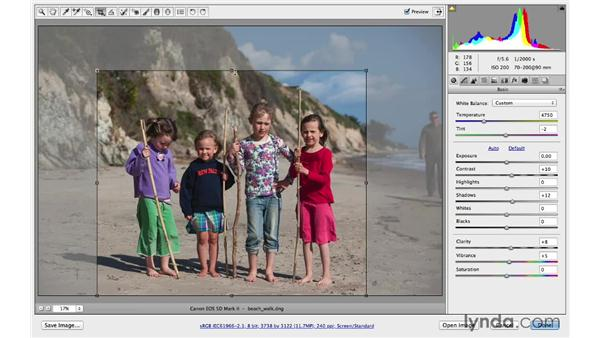 Introducing the Crop tool: Photoshop CC for Photographers: Camera Raw 8 Fundamentals