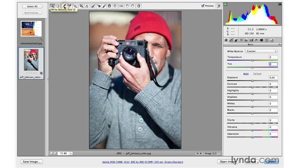Improving color balance: Photoshop CC for Photographers: Camera Raw 8 Fundamentals