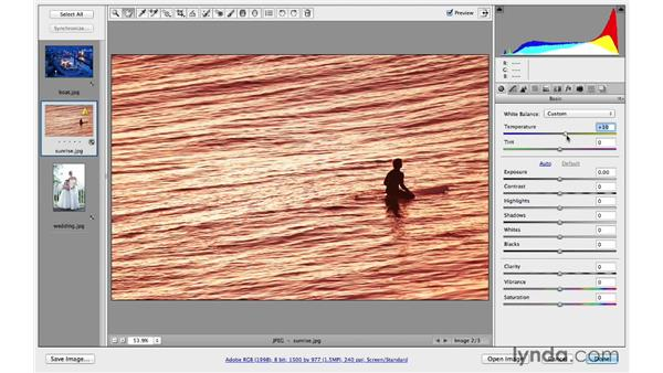 Enhancing color with Temperature and Tint: Photoshop CC for Photographers: Camera Raw 8 Fundamentals