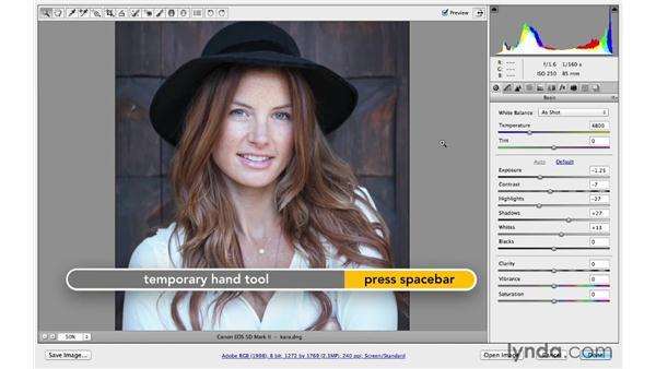 Automatically correcting exposure: Photoshop CC for Photographers: Camera Raw 8 Fundamentals