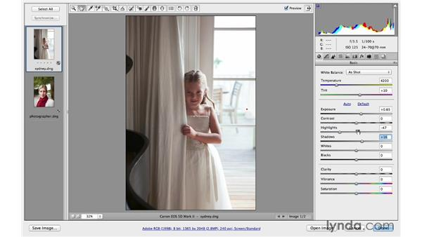 Recovering highlight and shadow detail: Photoshop CC for Photographers: Camera Raw 8 Fundamentals