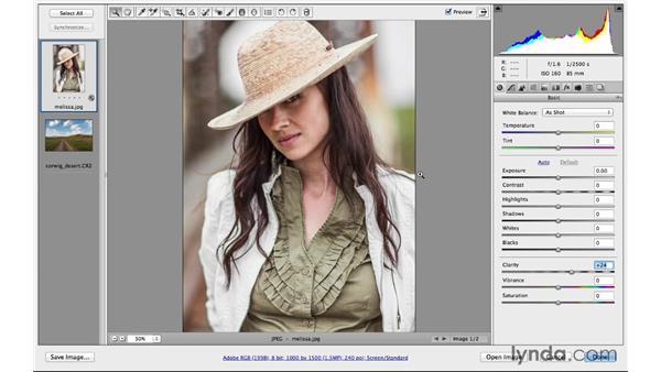 Increasing Clarity: Photoshop CC for Photographers: Camera Raw 8 Fundamentals