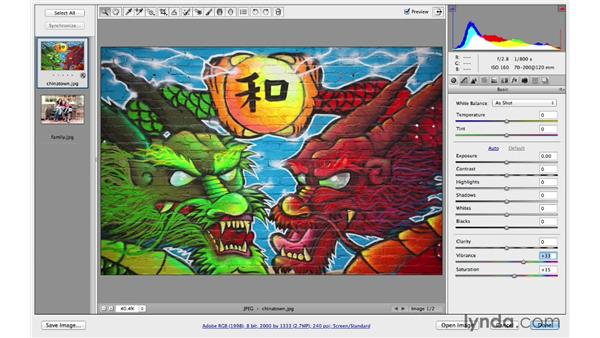 Improving color with Vibrance: Photoshop CC for Photographers: Camera Raw 8 Fundamentals