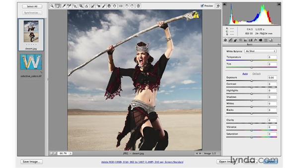 Making creative color adjustments: Photoshop CC for Photographers: Camera Raw 8 Fundamentals