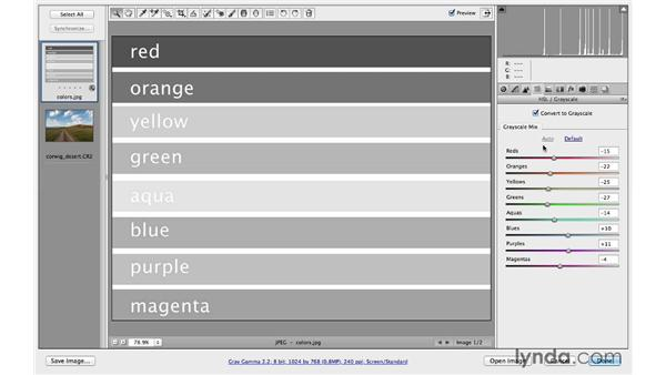 Introducing the best way to convert to black and white: Photoshop CC for Photographers: Camera Raw 8 Fundamentals