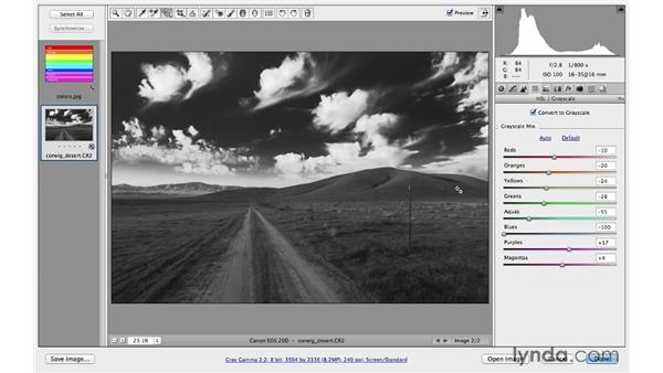 Creating a dramatic black-and-white landscape: Photoshop CC for Photographers: Camera Raw 8 Fundamentals