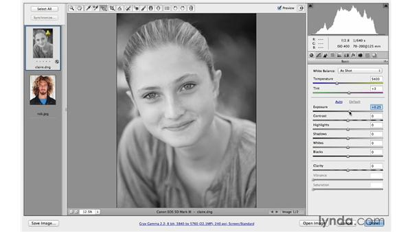 Converting a portrait to black and white: Photoshop CC for Photographers: Camera Raw 8 Fundamentals
