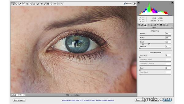 Sharpening and reducing noise on a portrait: Photoshop CC for Photographers: Camera Raw 8 Fundamentals