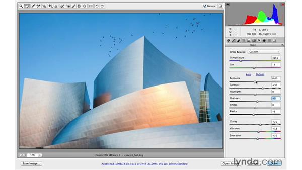 Basic and Detail panel workflow: Photoshop CC for Photographers: Camera Raw 8 Fundamentals