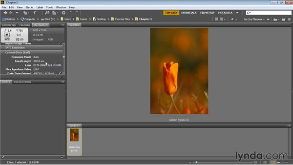 Introducing the image: Photoshop Artist in Action: Tim Grey's Photo Optimization Techniques