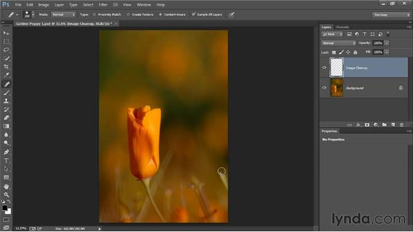 Some basic cleanup: Photoshop Artist in Action: Tim Grey's Photo Optimization Techniques