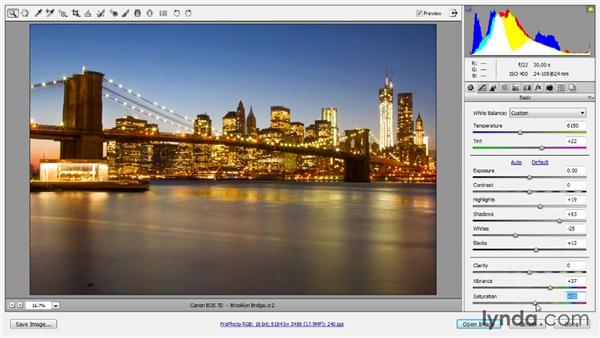 Raw processing: Photoshop Artist in Action: Tim Grey's Photo Optimization Techniques