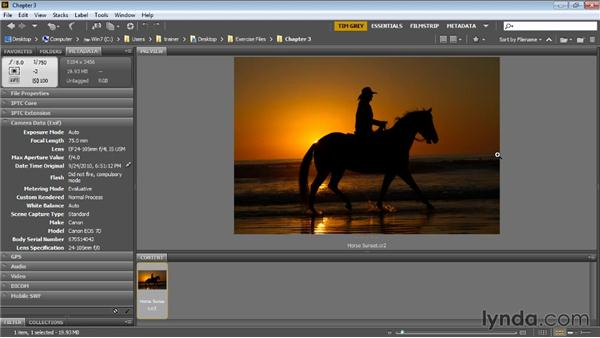 Reviewing the photo: Photoshop Artist in Action: Tim Grey's Photo Optimization Techniques