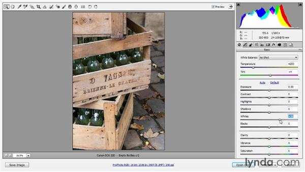 Basic raw conversion: Photoshop Artist in Action: Tim Grey's Photo Optimization Techniques